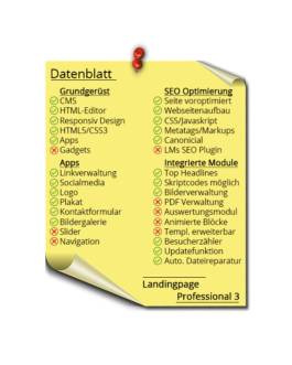 Landingpage Professional 3